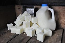 Goat Milk-Raw.jpg