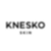 KNESKO Logo.png