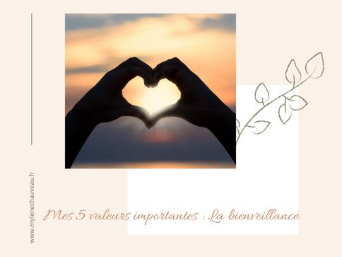 Mes 5 valeurs importantes : La bienveillance