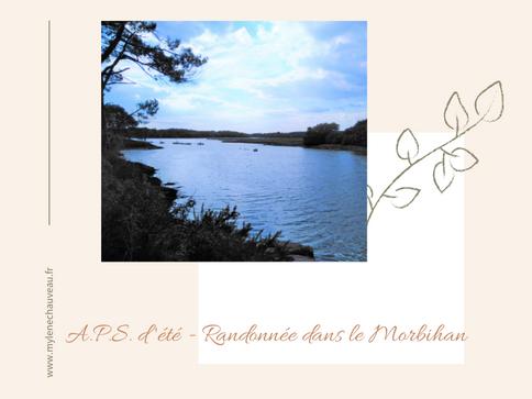 A.P.S. d'été - Randonnée dans le Morbihan
