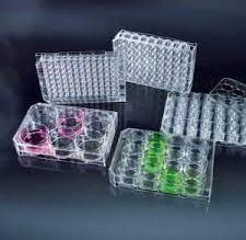 Nghiên cứu quy trình khảo nghiệm chế phẩm diệt khuẩn Phòng Nghiên cứu vi sinh