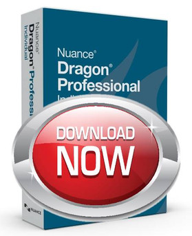 Dragon Professional 15
