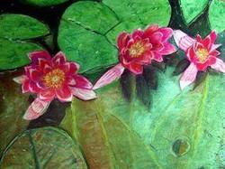 Three Lotus