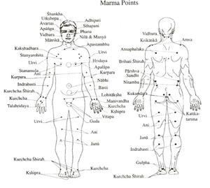 Vous pouvez retrouvez sur la planche des points marmas utilisés lors des ateliers d'automassage et en soin individuelle.