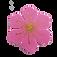 Tạo hình Vẽ hoa đào, hoa mai.png