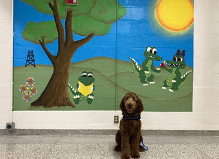 Mt. Pleasant Public Schools will be bringing in four social/emotional therapy dogs