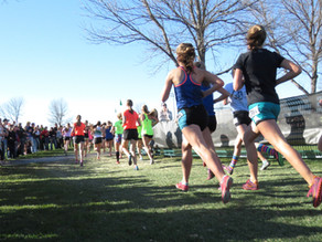 Preparation for Race Day (Part II): Two Weeks and Counting
