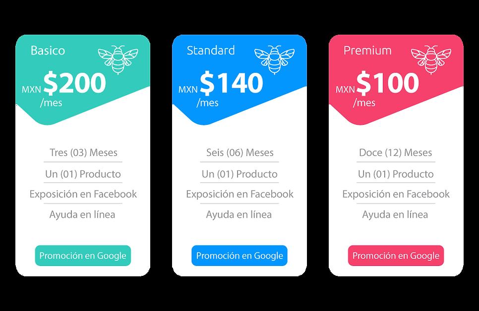 Plan-de-Precios-Pesos-MXN.png