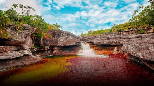 Caño Cristales | Travel Modules | Newtours Colombia