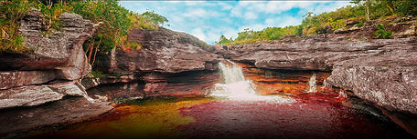 Cano Cristales | Travel Modules | Newtours Colombia
