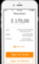 FlyCar App Pagá Cómodamente