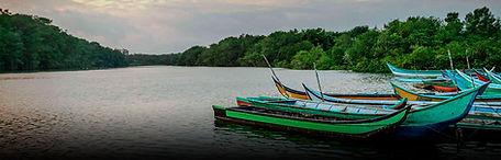Nature Reserve Cienaga Grande Tour | Barranquilla Daytours | Newtours Colombia