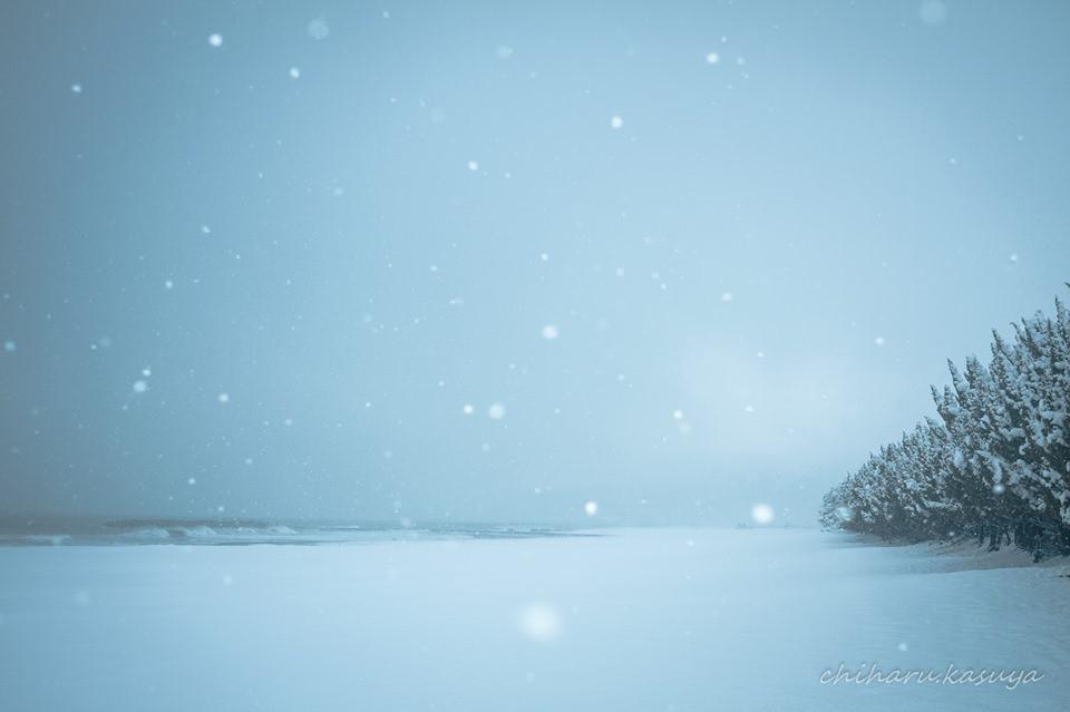 粕谷千春「波と雪とその向こうにあるもの」