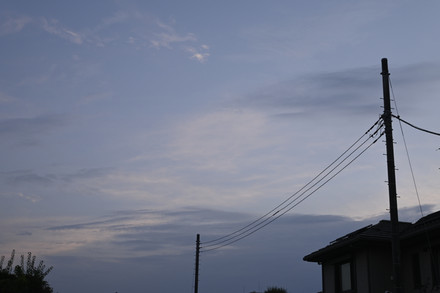 0801.JPG