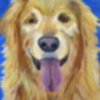 Pet Portraits Paint Dogs Cats Newcastle