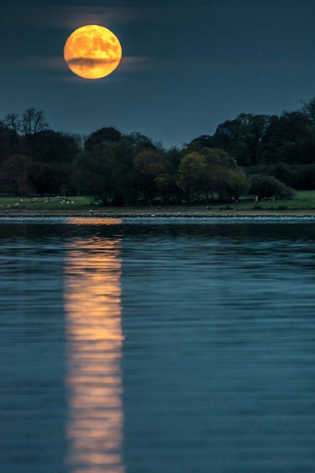 Supermoon over Rutland Water