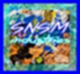 SNSMindustries Logo.png