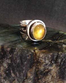 Amber ring.  £210