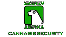 Why Security is essential to the Cannabis Industry