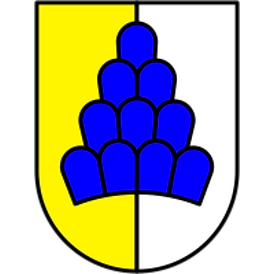wappen_salenstein.png