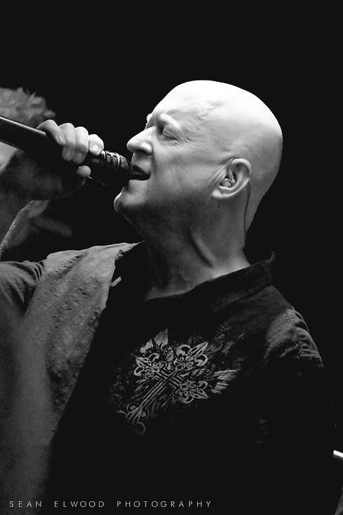 SING (Digital Download)