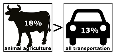 animal agriculture generates more greenhouse gases than all transports combined