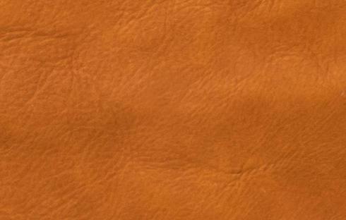 Sumatra Cognac 7103F.jpg