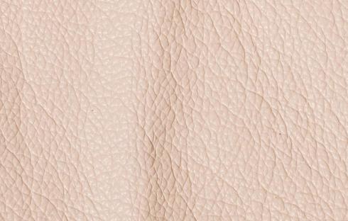 Prestige Cream Evolution 401C.jpg