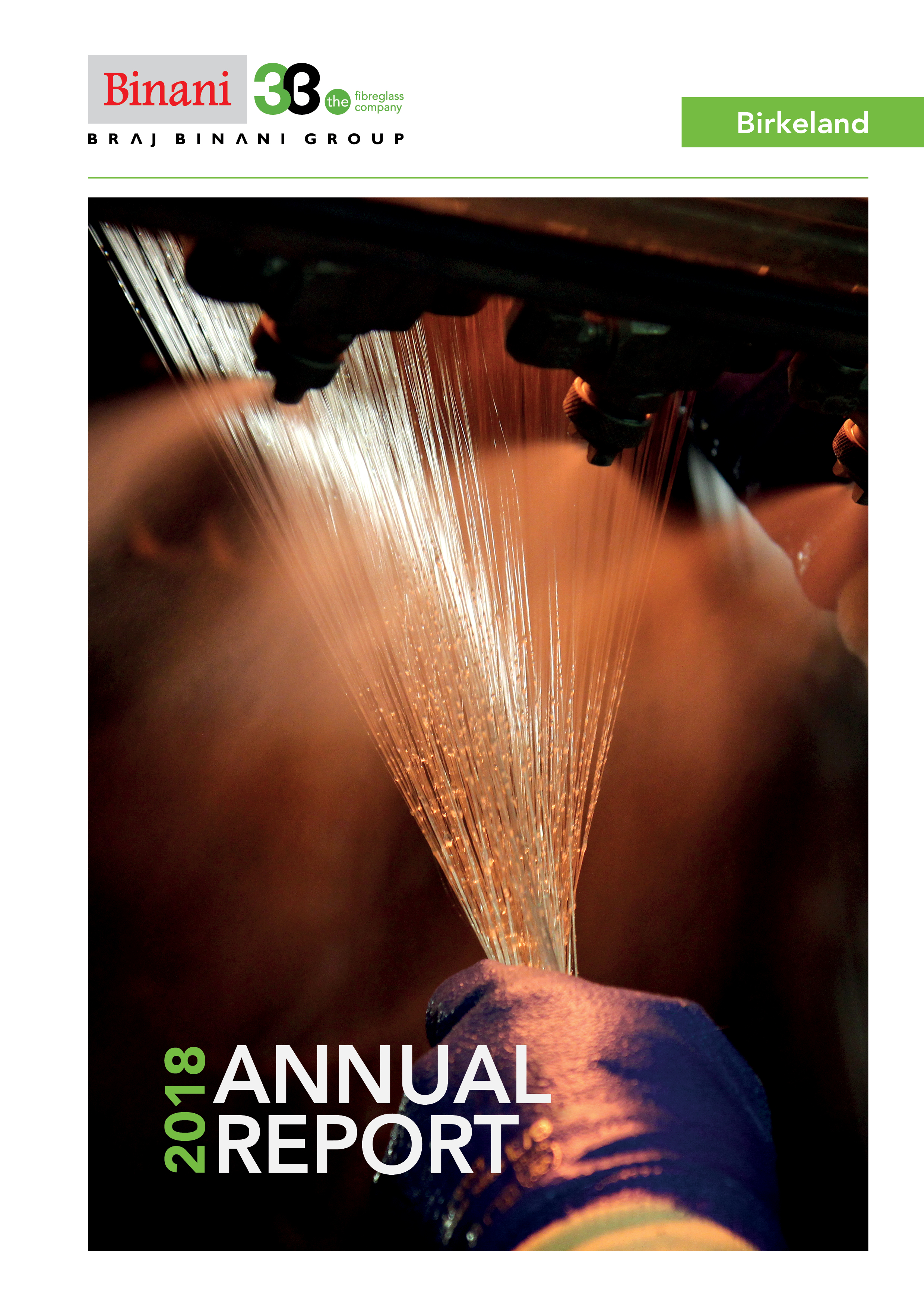 3B Fibreglass-AnnualReport-2018-ENG_