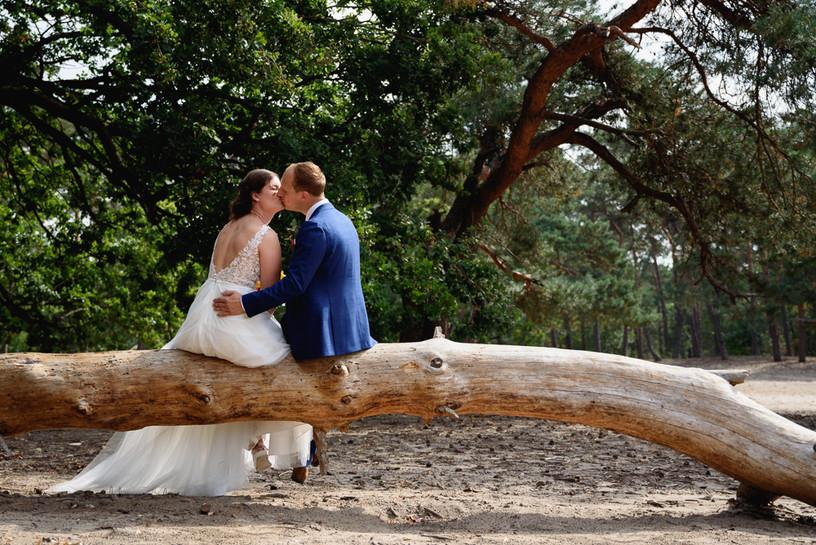 Vrachelse heide | trouwreportage