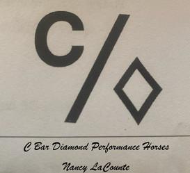 Nancy Logo.jpg