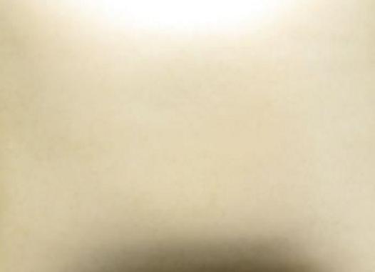 FN302 Elfenbein Matt