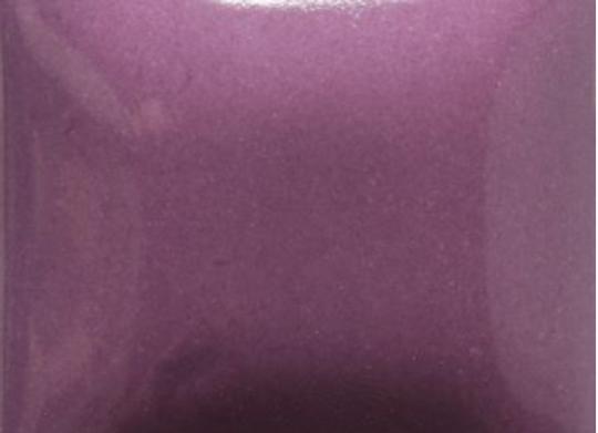 FN036 Grape