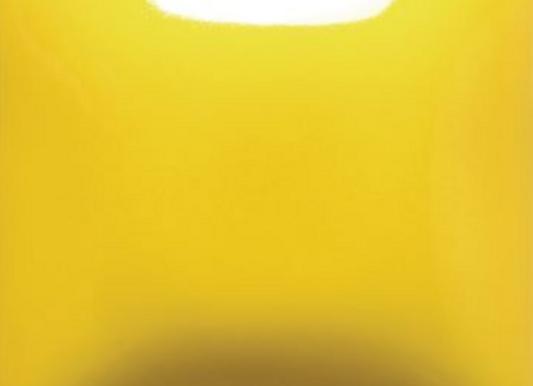 FN002 Yellow