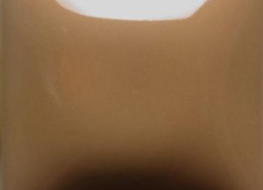 FN022 Tan