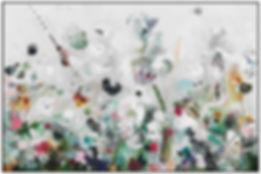 kleurenweideLijst.jpg