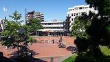 Waikato Aligned Planning