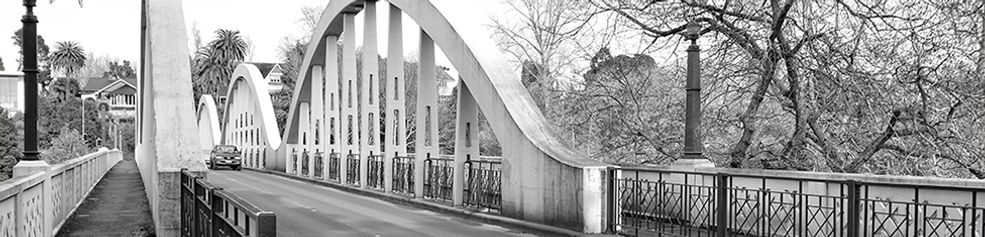 Fairfield Bridge, Hamilton