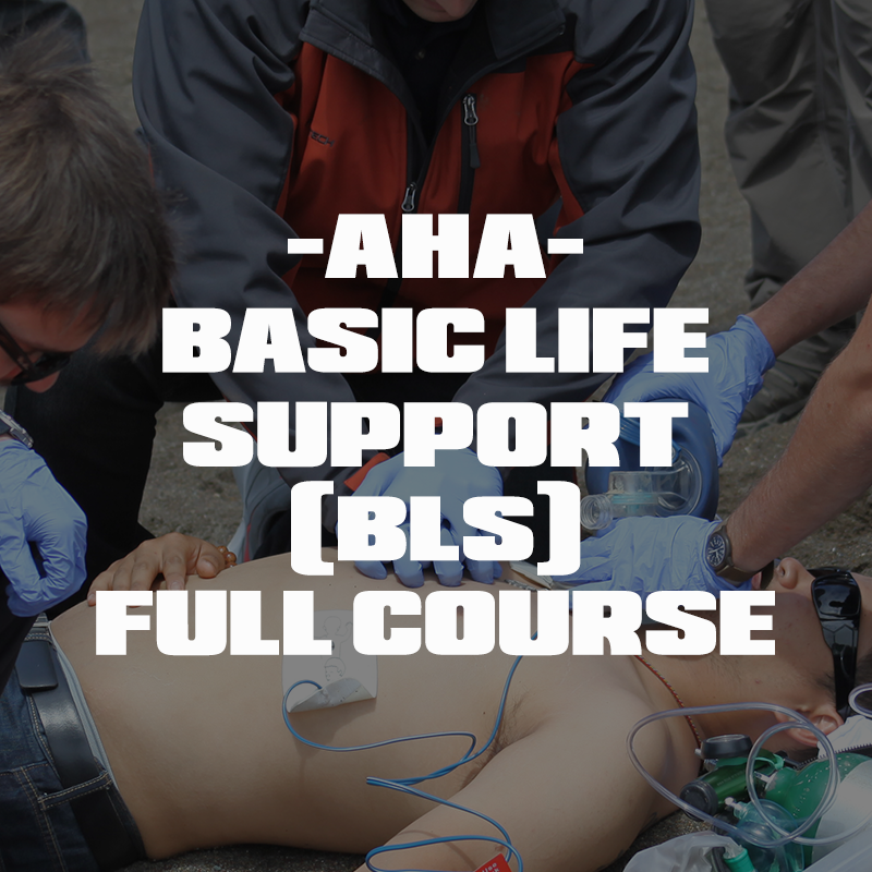 AHA - BLS for Healthcare Providers Full