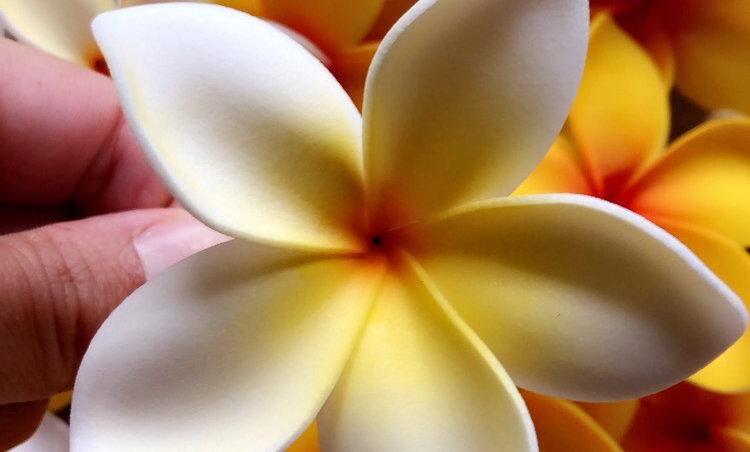 Fleur PLUMERIA sur pic