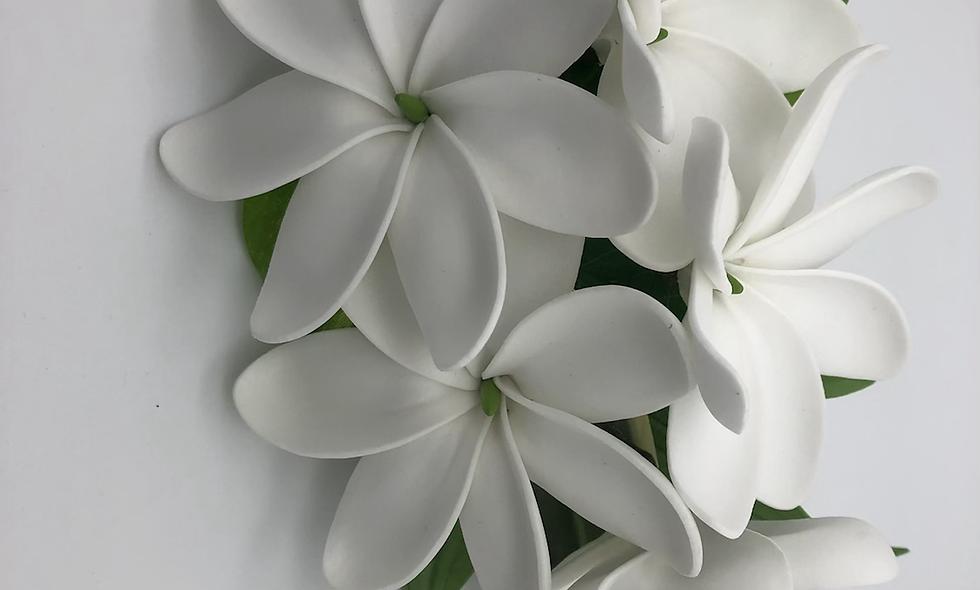 Poara Tiare Tahiti - Grand modele