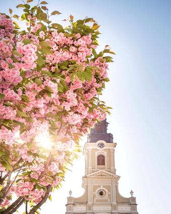 Biserica cu Luna Oradea