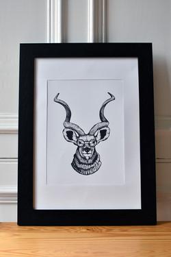 Hipster Antelope