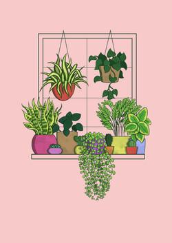 Plant Line-Up