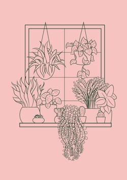 Plant Line-Up Outline