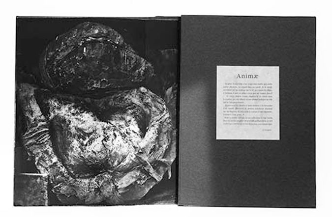 Animae page1niveaux de gris.jpg