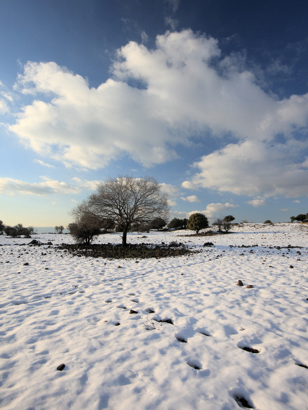 Winter is here:   Winter solstice marks shortest day & longest night of the year