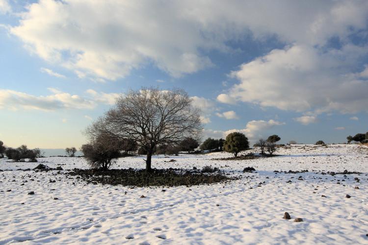 ABC of Winter