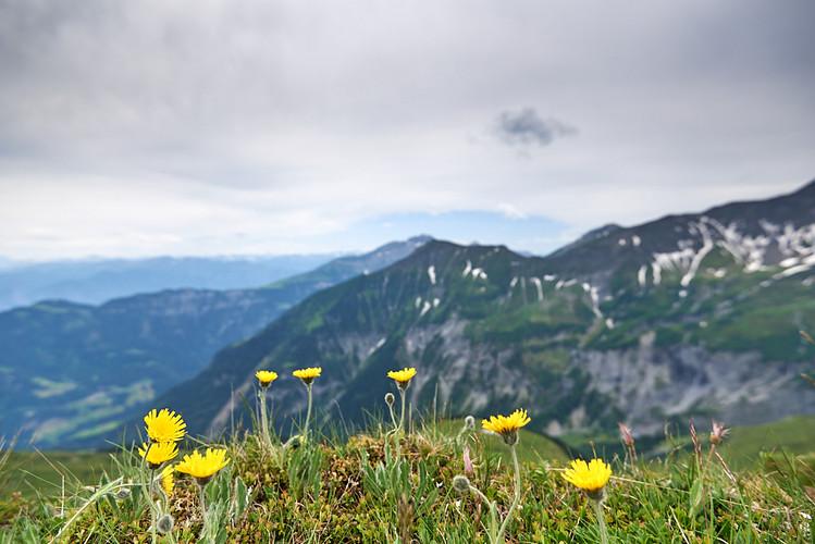 2019-07-06 Pizol Hiking-TSP JPG 1080px 1