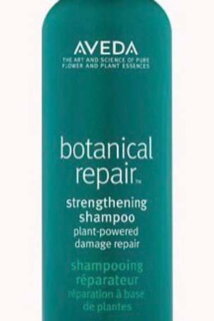 Aveda Botanical Repair Shampoo - 200 ml